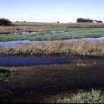 Iowa Nutrient Reduction Strategy Released for Public Comment